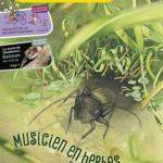 La Petite Salamandre pour les enfants curieux de nature