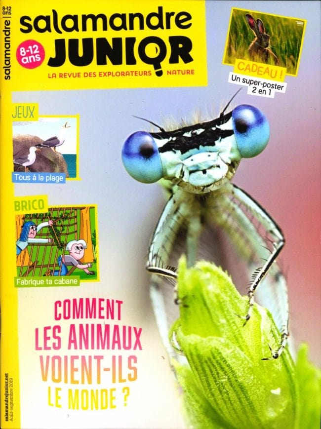 La salamandre junior magazine
