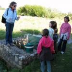 De Brest à Ouessant : Découverte du Pays d'Iroise en famille
