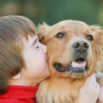 Votre enfant réclame un animal : à savoir avant de céder