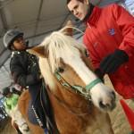 Ateliers de remobilisation par l'équitation (ARPE)
