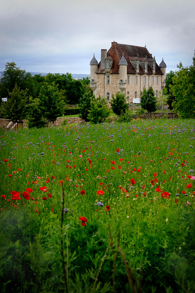 Prairies et vue chateau
