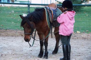 paris poney