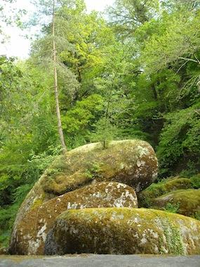 Forêt Huelgoat