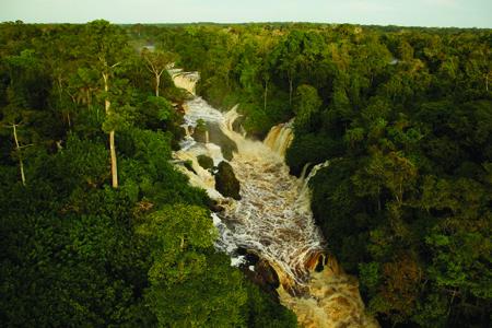 Il était une forêt, au milieu la rivière
