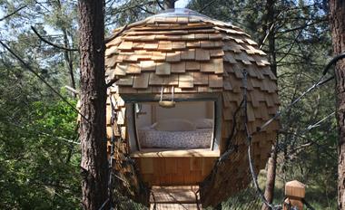 cabane_dans_les_arbres_lov_nid