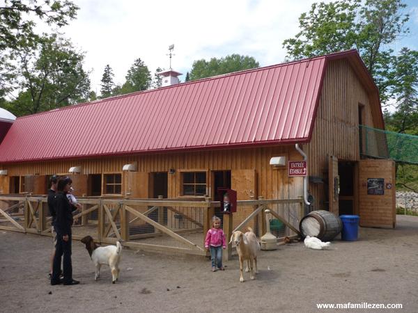 Zoo Saint-Félicien - La petite ferme