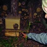 Fabriquer une cabane en bois au hérisson