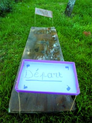 Course d'escargots sur planche en bois