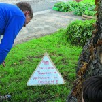 Inventer de nouveaux panneaux de signalisation nature