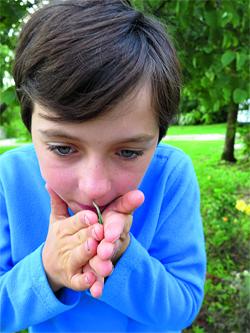 frotter les plantes aromatiques entre ses doigts