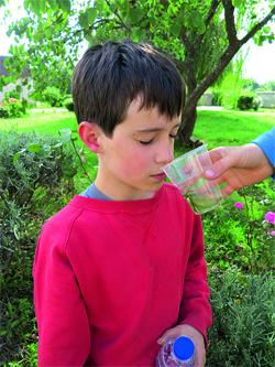 test à l'aveugle pour reconnaître les odeurs des plantes