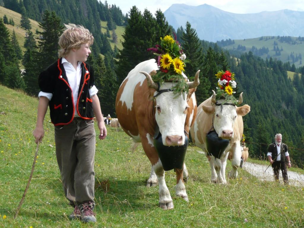gstaad-saanenland-tourismus (2)