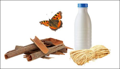 materiel pour fabriquer refuge à papillons