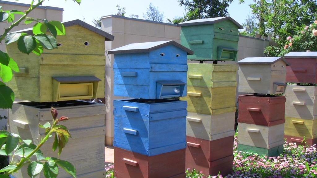 Terra Botanica - Des ruches vraiment uniques