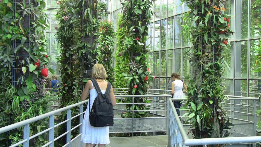 Terra Botanica - A l'abri des serres