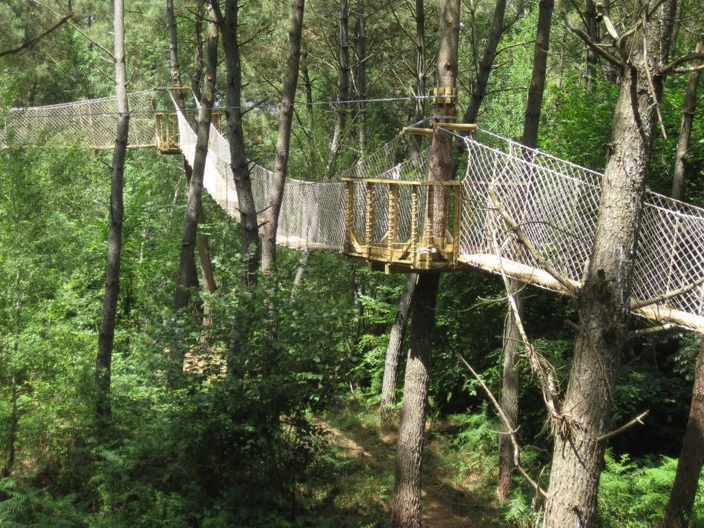 Domaine Bois aux Daims passerelle au-dessus enclos des biches