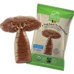 Croquez un baobab en chocolat, plantez un arbre avec Belvas !