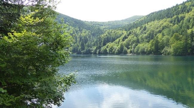 vacances nature dans le Massif des Vosges