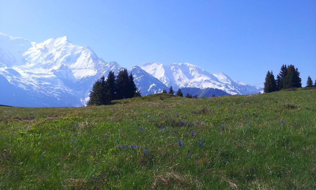 Plateau du Prarion aux Houches