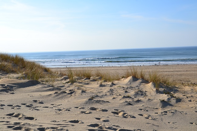 Plage-moliets-MDupouy