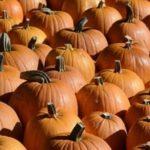 Et si on fêtait Halloween ?