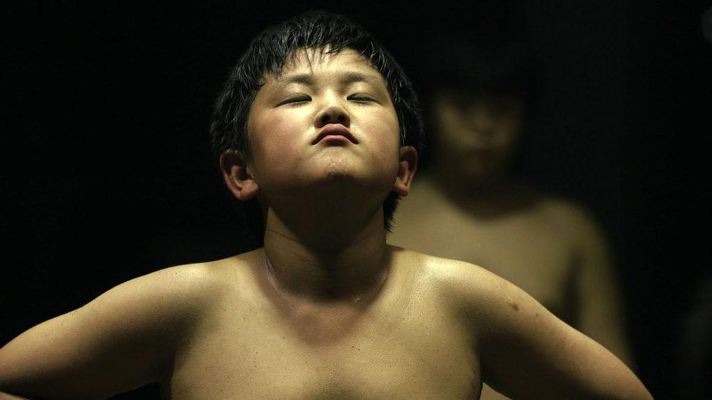 graine-de-champion-chikara-sumo