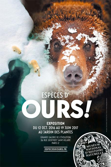 affiche-expo-especes-d-ours-jardin-des-plantes
