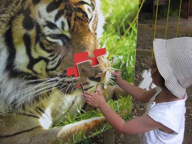activite-enfant-zoo