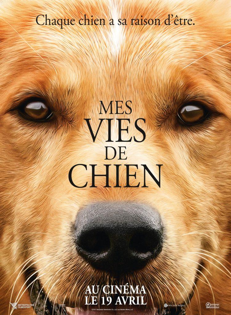 Affiche du film Mes vies de chien, au cinéma à partir du 19 avril 2017