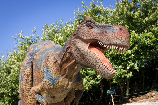 Thoiry-DinoZoore