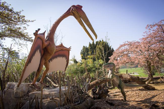 Zoo-de-Thoiry-Dinozoore(2)