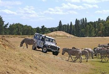 Fêter un anniversaire enfant à Thoiry : safari en 4x4