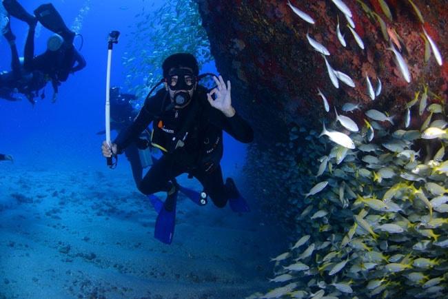 Plongeur sous épave au milieu ban de poissons