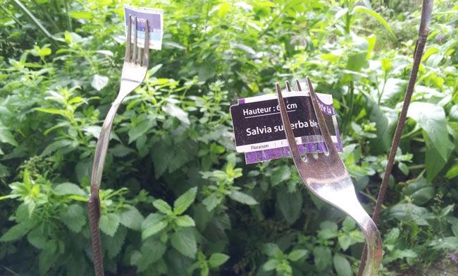 Etiquetage original des herbes aromatiques du jardin de la Casa Moli