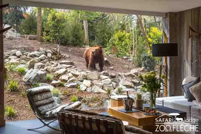 H bergements insolites dormir dans un parc animalier for Chambre zoo de la fleche