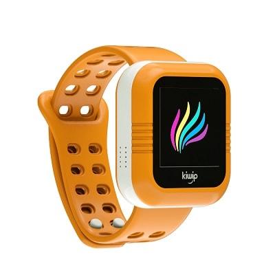 Kiwipwatch orange