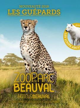 zoo parc de Beauval nouveautés 2018