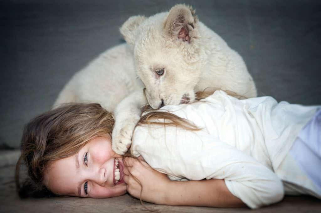 Avec Mia et le lion blanc, le documentariste Gilles de Maistre s'offre une nouvelle incursion dans la fiction avec une étonnante histoire d'amitié, malheureusement un peu caricaturale, entre une pré-adolescente et un animal féroce. Au cinéma le 26 décembre.