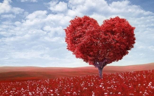 Idée Cadeau Couple Et Si On Offrait Un Weekend En Amoureux