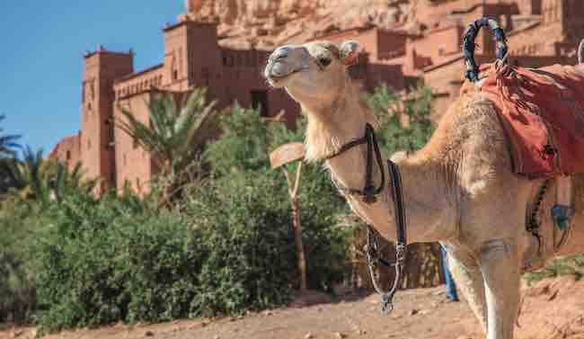 vacances au Maroc à Ouarzazate