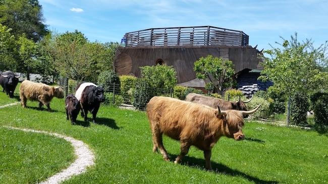 Diverti'Parc hébergements insolites en Saône-et-Loire