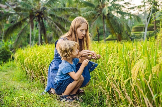 tourisme durable au kerala