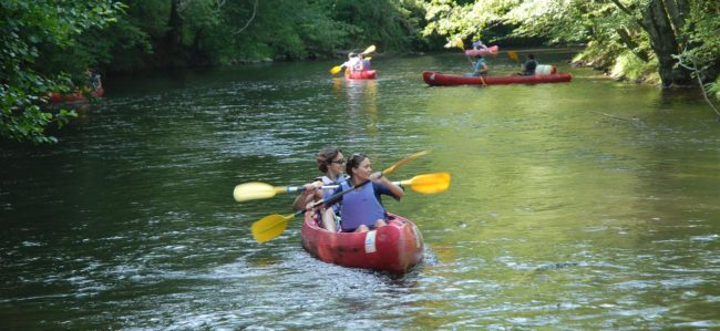 Descente en canoë dans un parc naturel régional