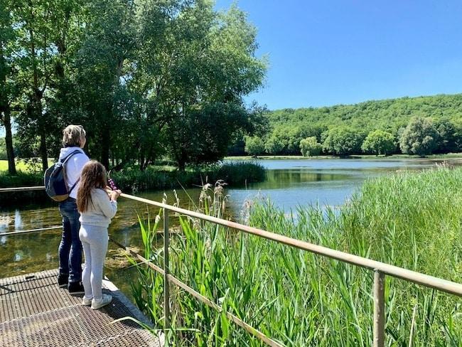 balade nature au Marais d'Andryes