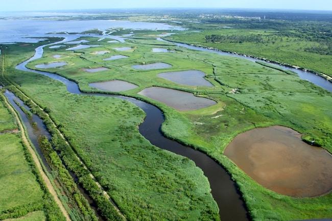 PNR Landes de Gascogne, delta de la petite Amazone