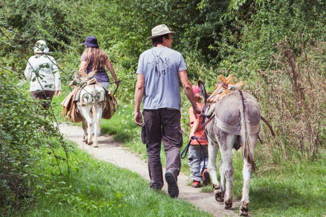 Balade en ânes en famille dans le parc naturel du Vexin français