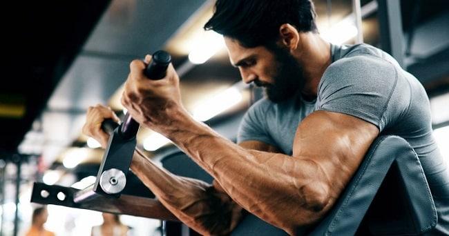 exercices de musculation pour prendre du muscle rapidement