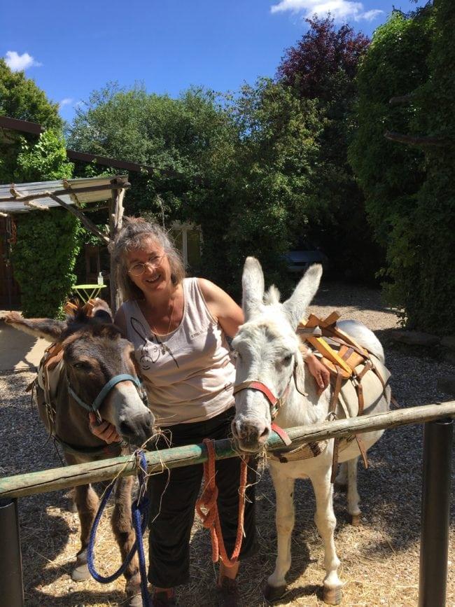 Rando en âne dans le Vexin français avec les ânes de Sandrine, d'Anes Vexin