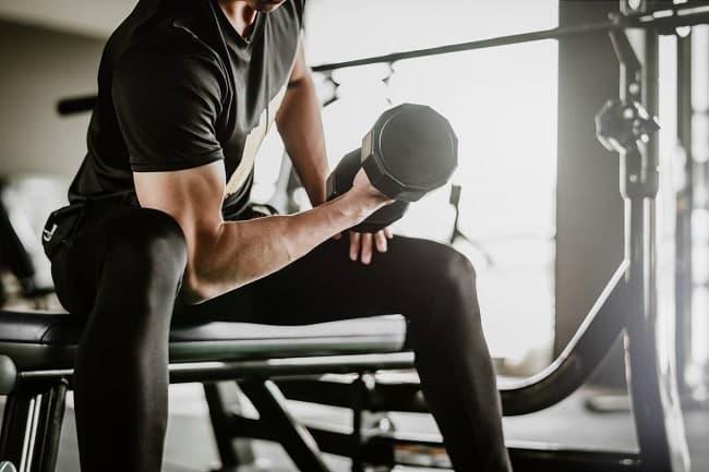 quels exercices pour la prise de muscle